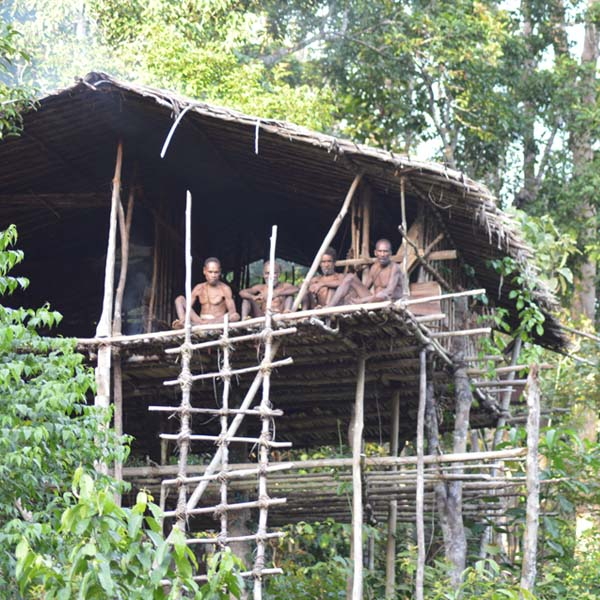 Korowai Tribe Papua | Adventure Indonesia Tours - Bali and Beyond